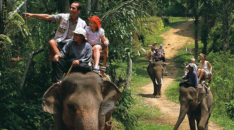 Enchanting Kerala Tour 08 Nights 09 Days