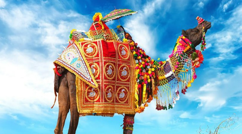 JAIPUR PUSHKAR SAME DAY TOUR